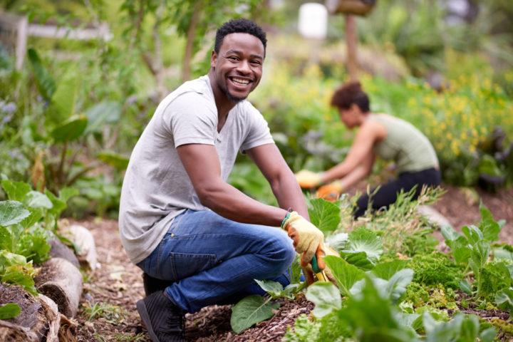 Junger schwarzer Mann im Gemüsebeet