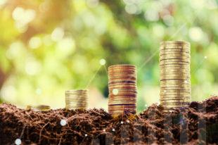 Fördern abgestufte Pensionskassenbeiträge die Altersdiskriminierung?